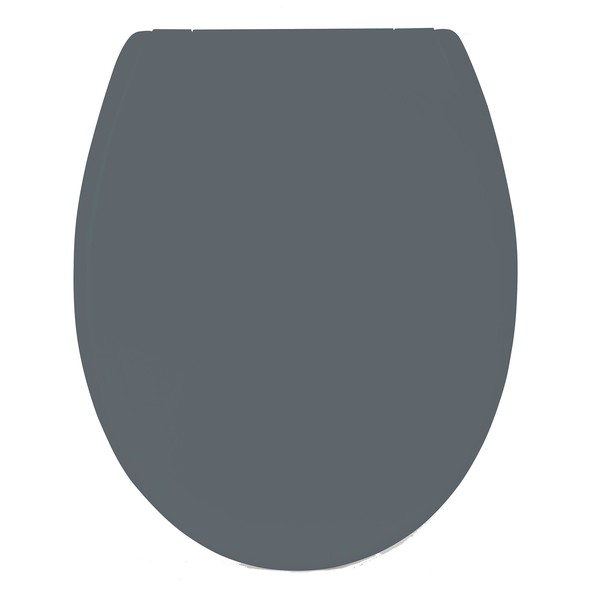 ASIENTO WC DECLIPSABLE GRIS